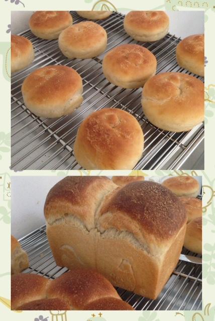 バンズと食パン